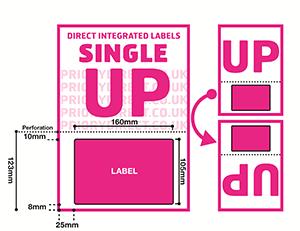 Single UP Icon