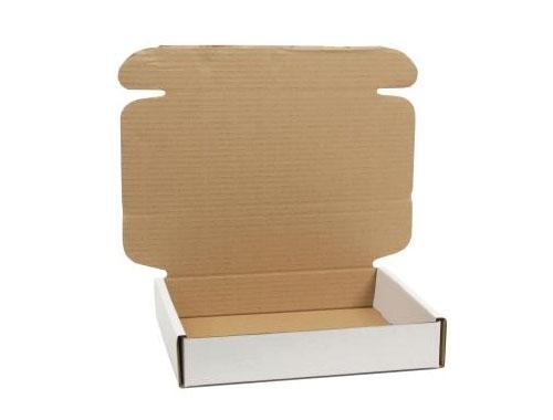 250 x 210 x 50mm White Postal Boxes - 4