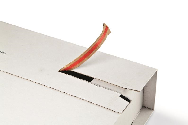 CP 037.52 - ColomPac Flexible Mailers - 250x190x75mm - 4